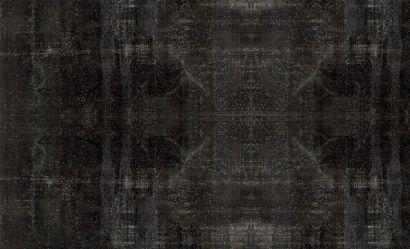 Decolorized 306X205