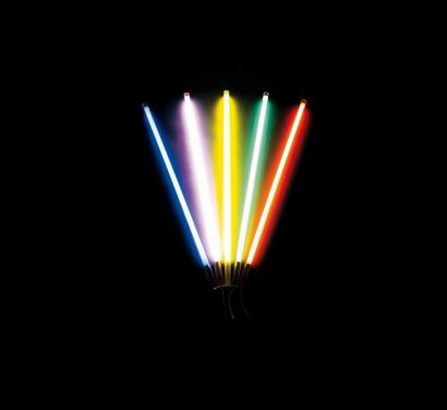 Linea Fluorescent Neon Lamp